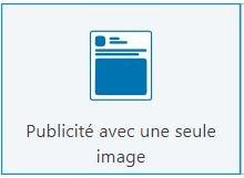Publicité sur une seule image - Un format de Publicité LinkedIn Ads