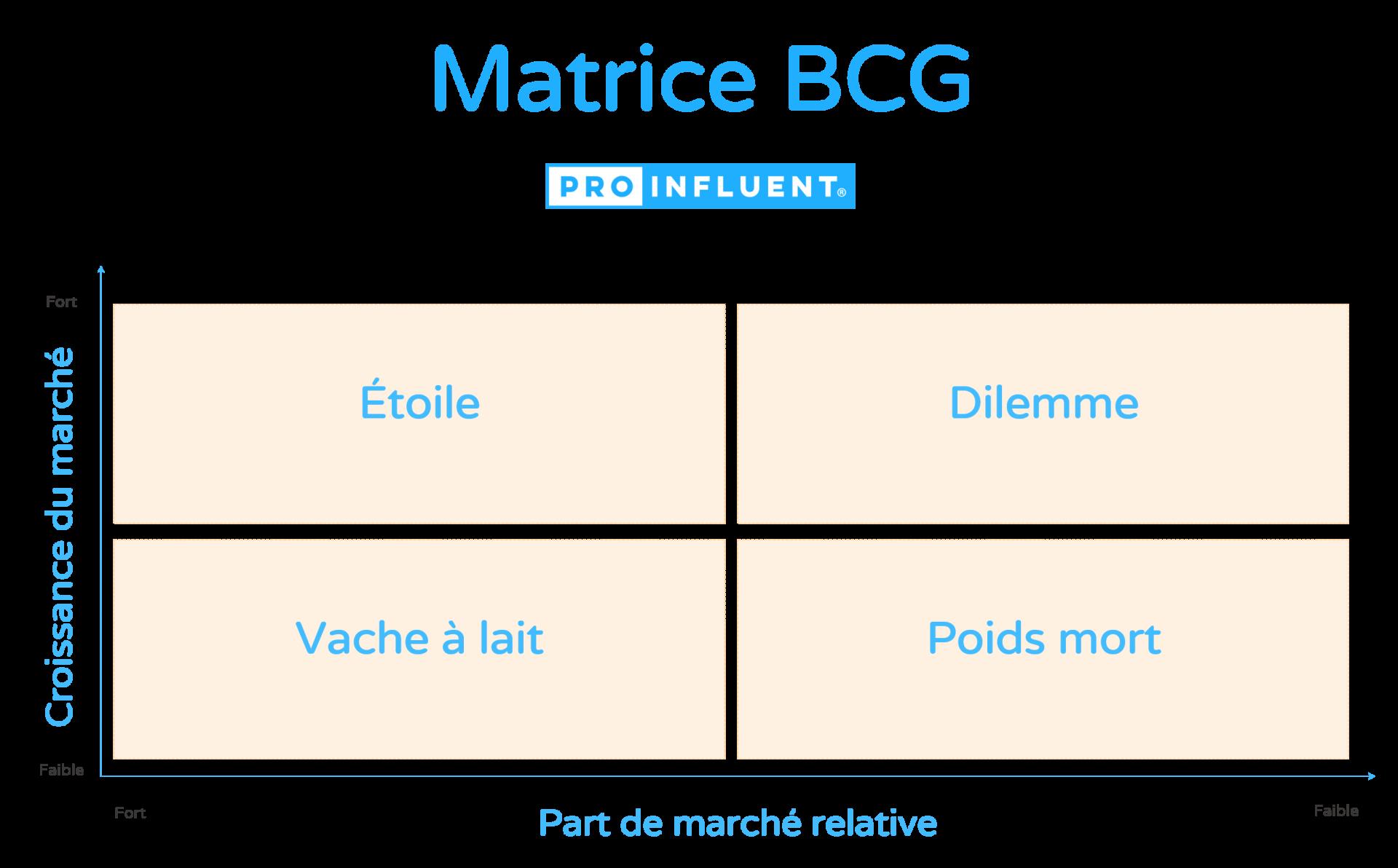 Comment réaliser une matrice BCG