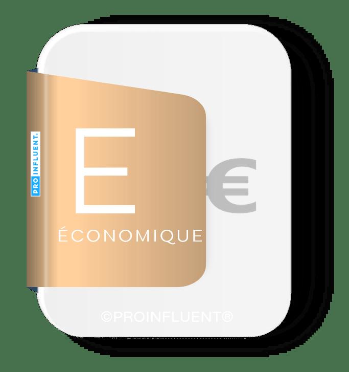 Analyse PESTEL : influences économiques
